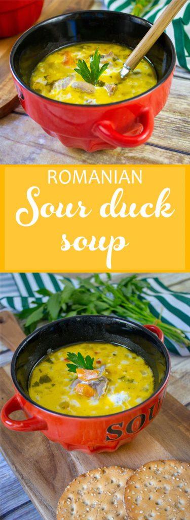 romanian-sour-duck-soup
